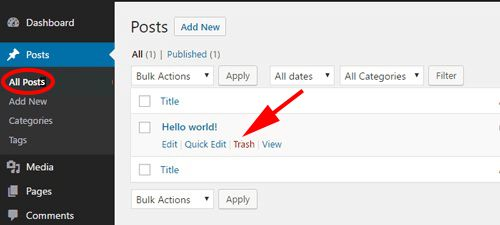 Delete default WordPress post