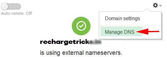 godaddy manage DNS details