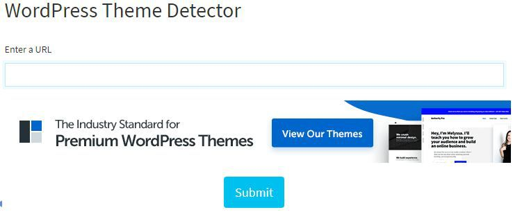 The Seo Tools for website theme detector